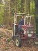 Maibaumaufstellen 2003